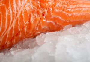 salmon-fresh