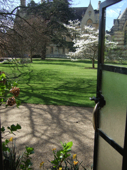 The view from our rooms in Trinity College