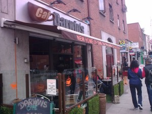 darwin's cafe coffee
